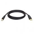 Tripp-Lite 6FT USB Cable